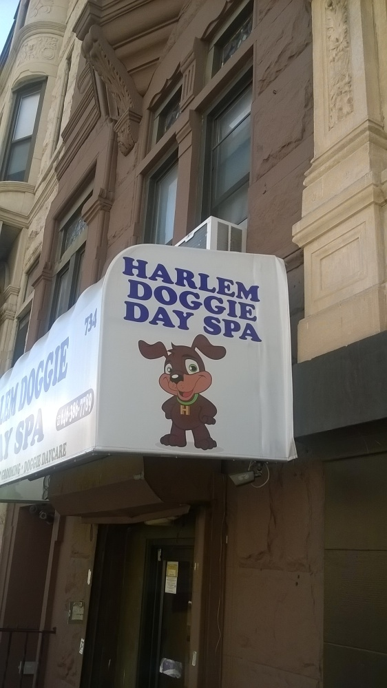 Harlem, New York City (2/5)