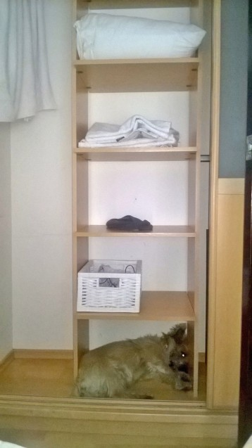 Wardrobe space.